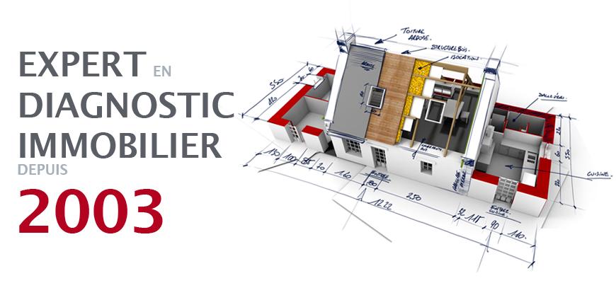 diagnostic immobilier haute savoie 74 gavard leroy. Black Bedroom Furniture Sets. Home Design Ideas